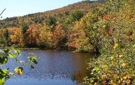 Fire Pond 9-27